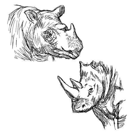 sumatran: illustration vector hand drawn doodle closeup rhinoceros isolated on white