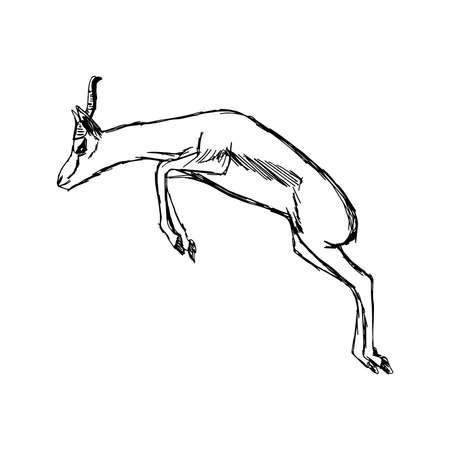 gazelle: illustration doodles of gazelle jumping isolated on white background