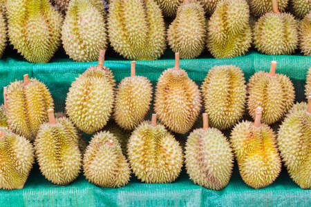 king of thailand: Durian, King of Fruit, for selling in Thailand.