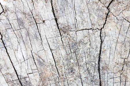 firmeza: piedra gris con grietas en la superficie.