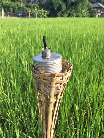 vertical photo of old rust kerosene lamp on the background of green rice field Stock Photo