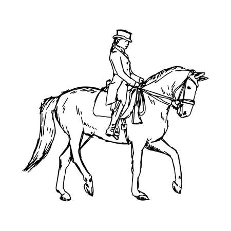Equestrian horse - vector illustration sketch hand drawn with black lines, isolated on white background Illustration