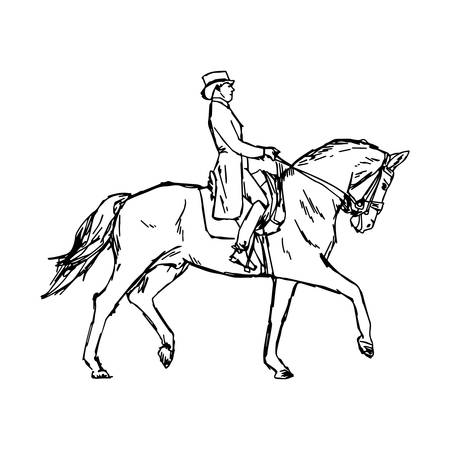 Young rider man on horse at dressage competition equestrian dressage - vector illustration sketch hand drawn with black lines, isolated on white background Illustration