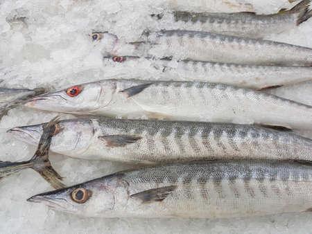 タイのスーパー マーケットに鈍角バラクーダ魚新鮮な氷を販売します。 写真素材 - 80920557