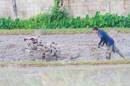 illustrative editorial: CHIANG RAI, THAILAND - MAY 25 : unidentified Asian farmer plowman using tiller tractor pushcart instead of buffalo on May 25, 2017 in Chiang rai, Thailand.