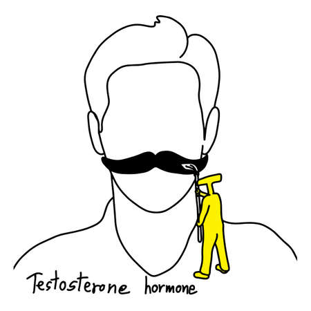 metaphor function of testosterone is to grow facial hair vector illustration sketch hand drawn with black lines, isolated on white background. Education Medical concept.