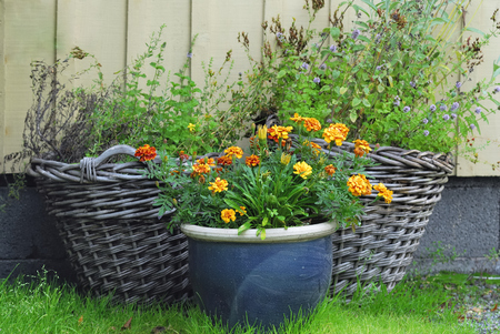 planters: Flower-filled outdoor planters