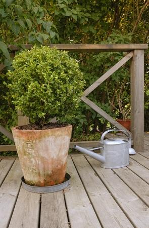 jardineras: Planters - vista del patio trasero Foto de archivo