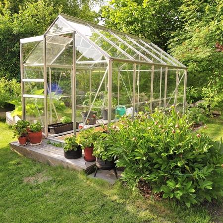 invernadero: Un invernadero centro de jardiner�a con una colorida exhibici�n de plantas y flores en maceta