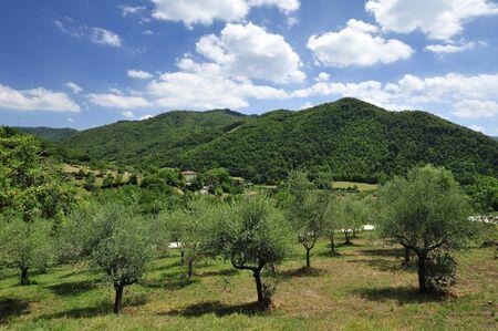 bologna: Italian countryside between Firenze and Bologna.