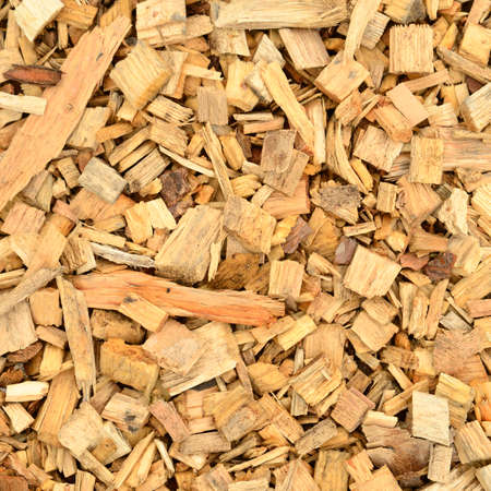 wood chip: Close up of wood chip. Stock Photo
