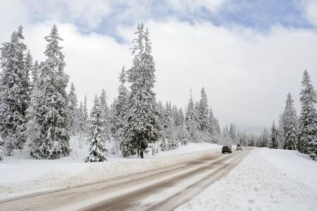 mt hood national forest: Road through a Winter Wonderland - Salen in Sweden.