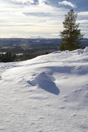 Winter landscape, Idre in Sweden.