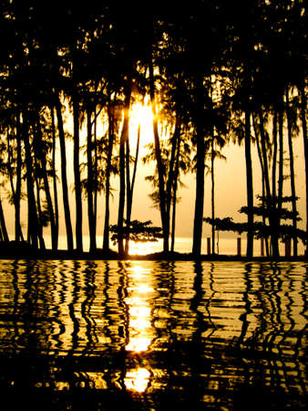 Dream sunset at a swimming pool with the sun shine through palm trees  photo
