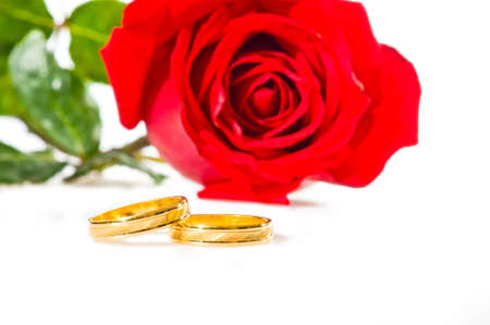 Red rose and golden wedding rings over white photo