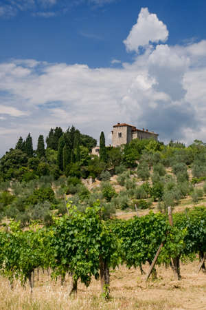 chiantishire: Tuscany Villa in Tuscany, Italy, surrounded by wine and a summer landscape Stock Photo