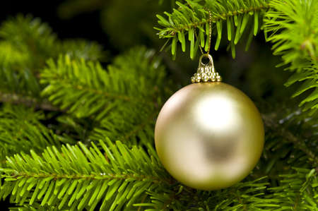 Ball shape Christmas decoration in real tree Stock Photo