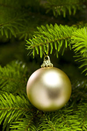evergreen branch: Forma de bola decoraci�n de Navidad en �rbol real