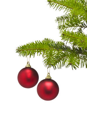 Two red decoration balls in Christmas tree branch with negative space Stock Photo - 10056627