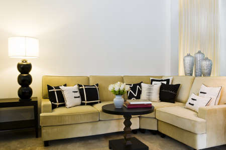 Contemporary sofa seating area beautiful interior design Stock Photo - 10503362