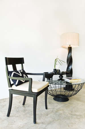 Contemporary seating combination in black with elegant pillows and details