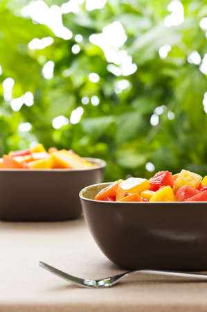 Two bowl of Mixed tropical fruit salad in front of nature background photo