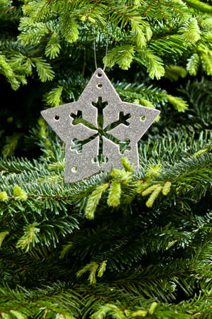 Silver Christmas ornament, in real pine tree branches photo