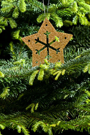 Gold Advent, Christmas ornament; in real Christmas tree  photo