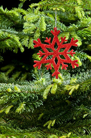 Red  artificial  snowflake ornament, in fresh pine Christmas tree photo