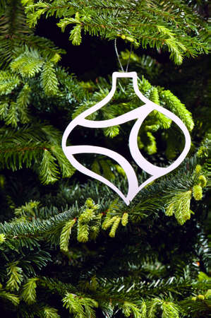 Bauble shape Christmas ornament in fresh green Christmas tree Stock Photo - 14122420