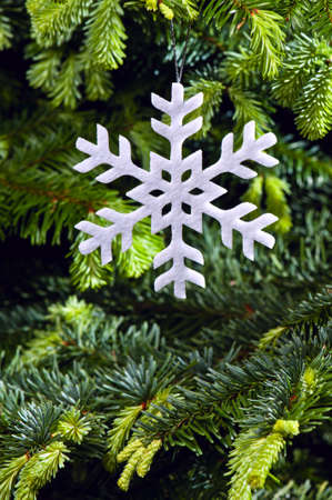 Snow flake shape Christmas ornament in fresh green Christmas tree Stock Photo - 14122414