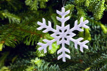 Snow flake shape Christmas ornament in fresh green Christmas tree Stock Photo - 14122397