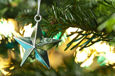 Star shape Christmas ornament, silver shining in color, in fresh green Christmas tree photo