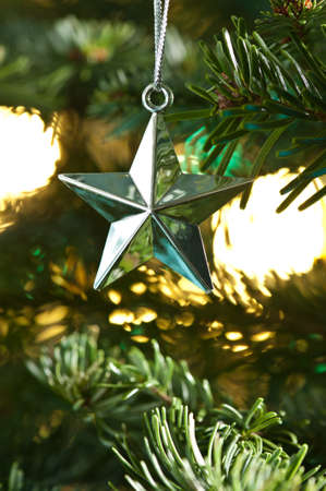 Star shape Christmas ornament, silver shining in color, in fresh green Christmas tree Stock Photo - 14219327