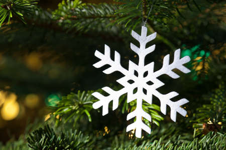 White artificial snowflake in a fresh green Christmas tree and beautiful background color reflection Stock Photo - 14265111