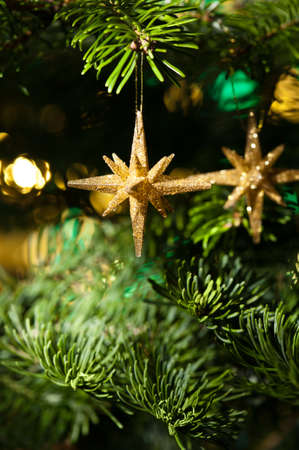 Decorative Gold Star ornament in a Christmas tree infront of a glitter background photo