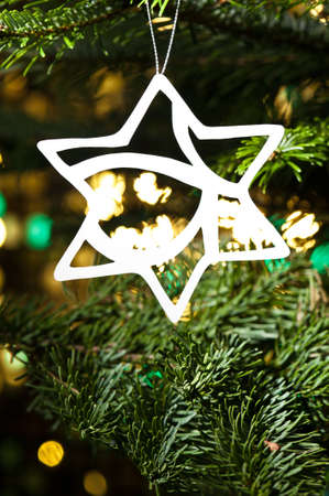 Star shape Christmas ornament in fresh green Christmas tree photo