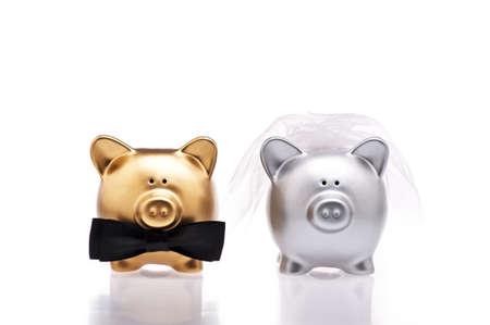 Manželství koncepce v použití dvou roztomilých prasat Reklamní fotografie