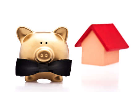 The lucky home owner a golden pig over white photo