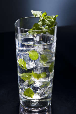 longdrink:  Green Mojito cocktail with fresh mint leaves