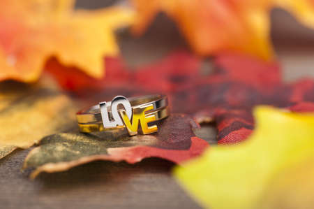 LOVE ring in festive autumn decoration photo