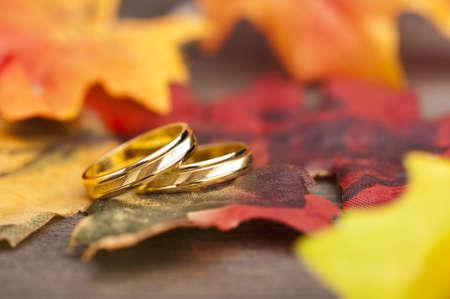 anillo de compromiso: Anillo de compromiso de la boda de la decoraci�n festiva de oto�o Foto de archivo