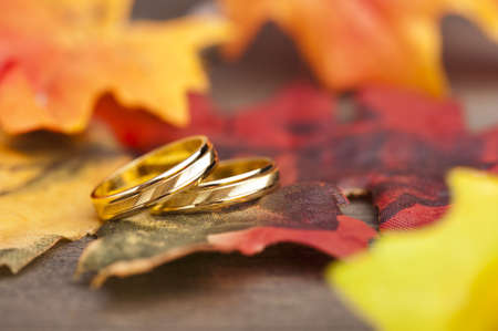 Wedding Engagement ring in festive autumn decoration