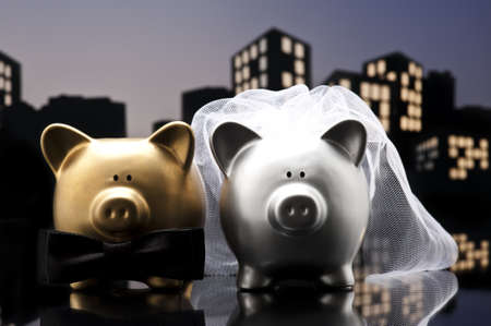 Metropolis City pig wedding the piggy bank with veil and bow tie photo