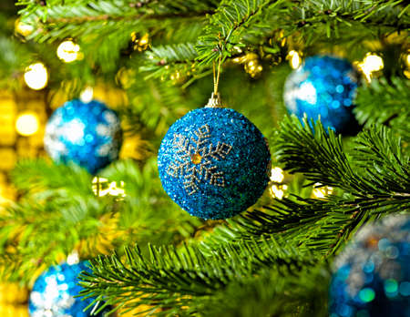 Bauble Ornament in a real Christmas tree in bright color photo