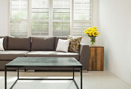 Gris canapé avec des coussins en face de fenêtres lovered Banque d'images - 28884018