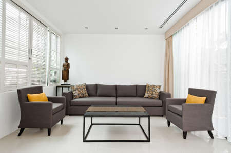 copy room: Bright Living room with grey sofa and minimalistic decoration