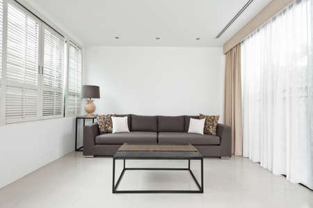 louvered: Bright Living room with grey sofa and minimalistic decoration