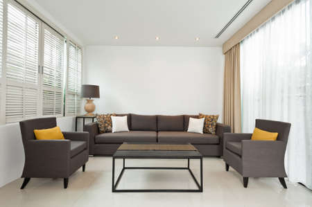 designer chair: Bright Living room with grey sofa and minimalistic decoration