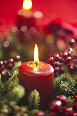 christmas candle: Advent wreath over red background with winter rose and berries
